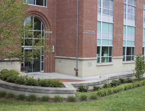 CCAC Allegheny Campus Landscape Improvements